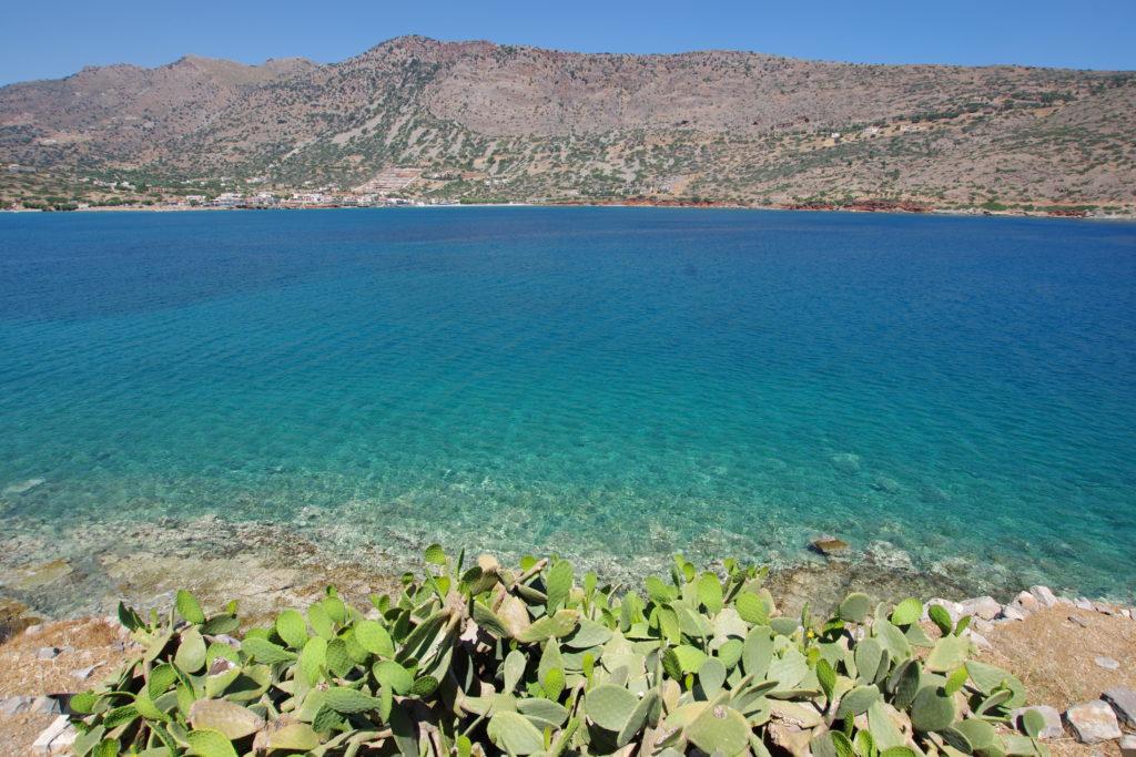 im Vordergrund ras-grüne Kakteen, Blick hinab auf türkisfarbenes Meer vor karger Küste, strahlender Sonnenschein