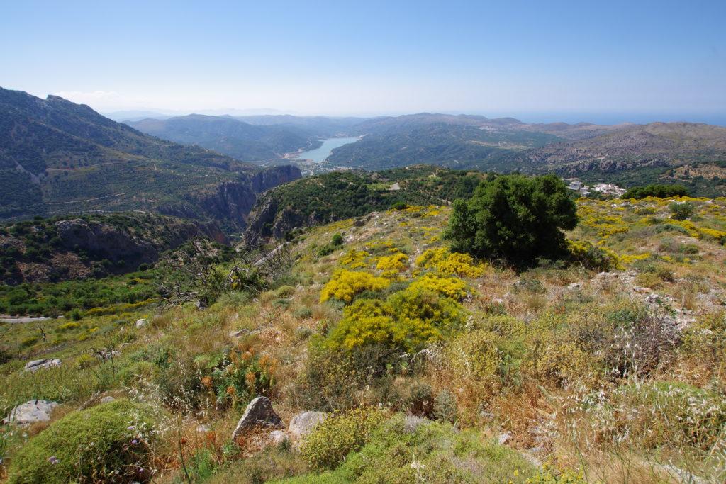 Blick von einem Berg auf Stausee und Meer bei herrlichem Wetter. Im Vordergrund blühende Frühlingswiese