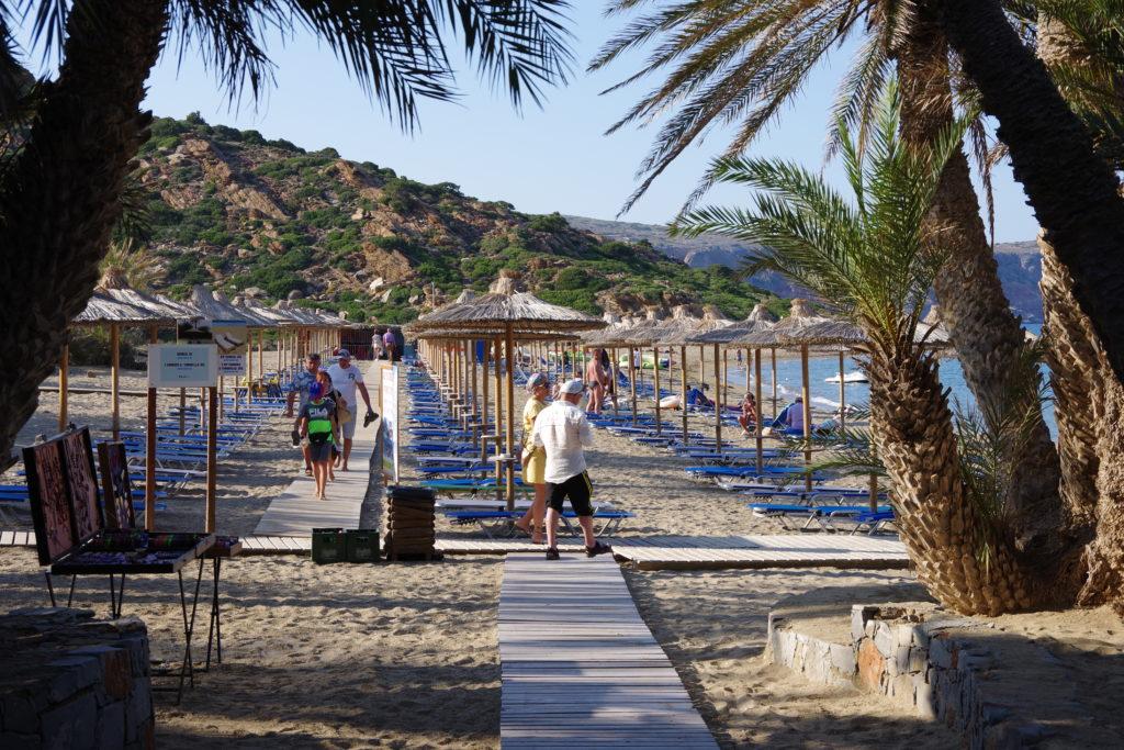 Liegestühle und Sonnenschirme auf Sandstrand mit Palmen