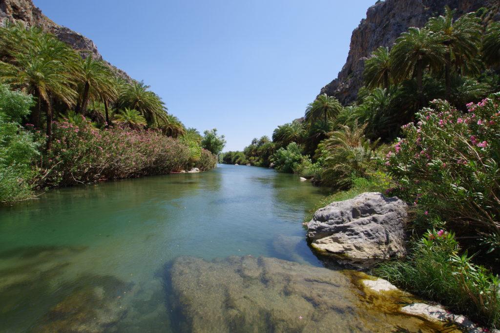 Blick auf Fluss, umrahmt von Palmen in einer Schlucht.