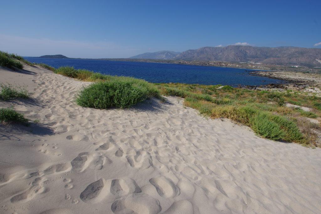 Blick von Sanddüne mit Dünenpflanzen auf dunkelblaues Meer, dahinter Berge
