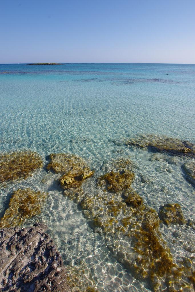 Seichtes, glasklares Meerwasser. Im Vordergrund gelb-bräunlich bewachsene Felsen unter Wasser.