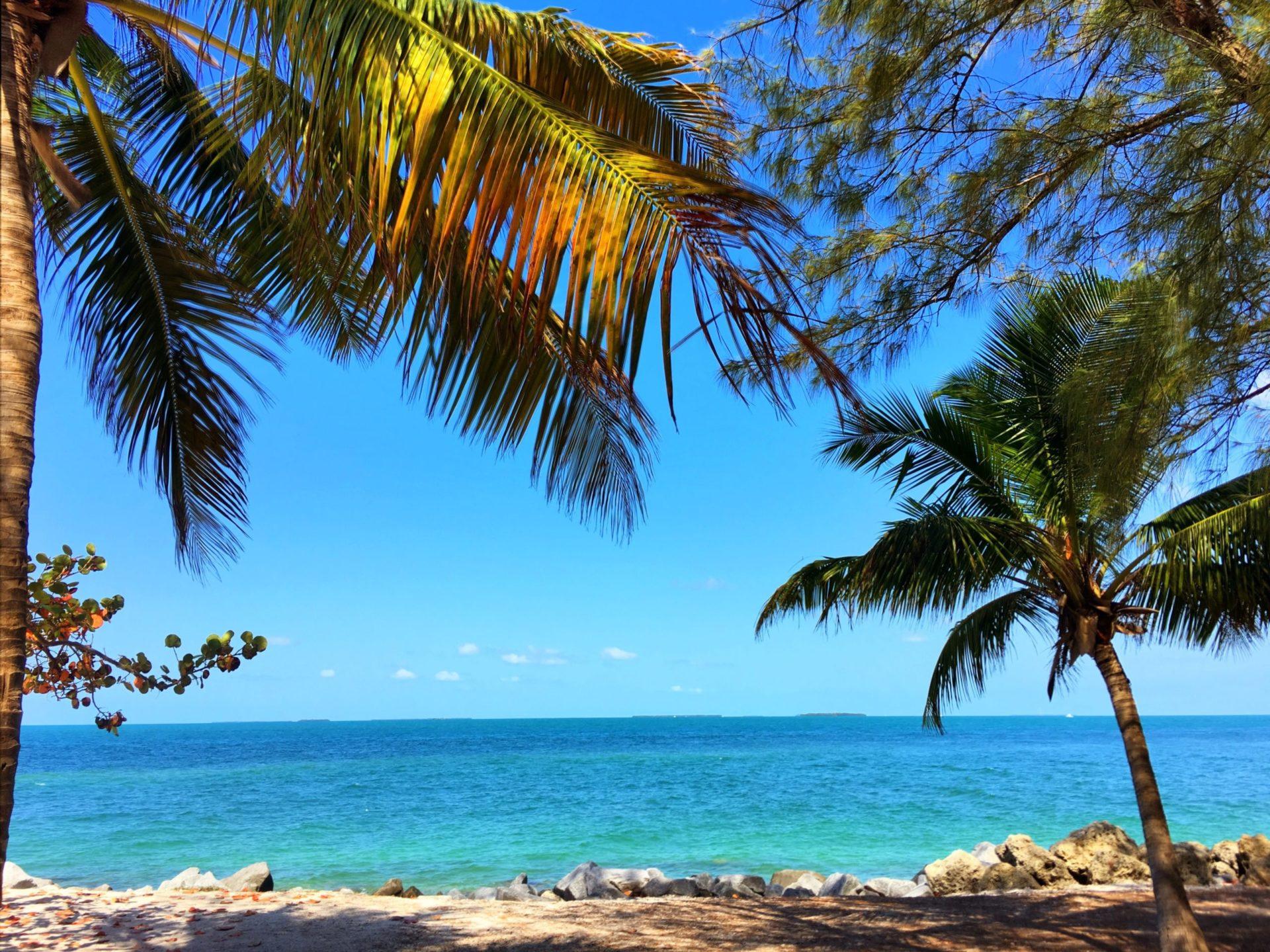Wassertemperatur Florida: Palmenstrand und Meer auf der Insel Key West am südlichsten Punkt der Florida Keys
