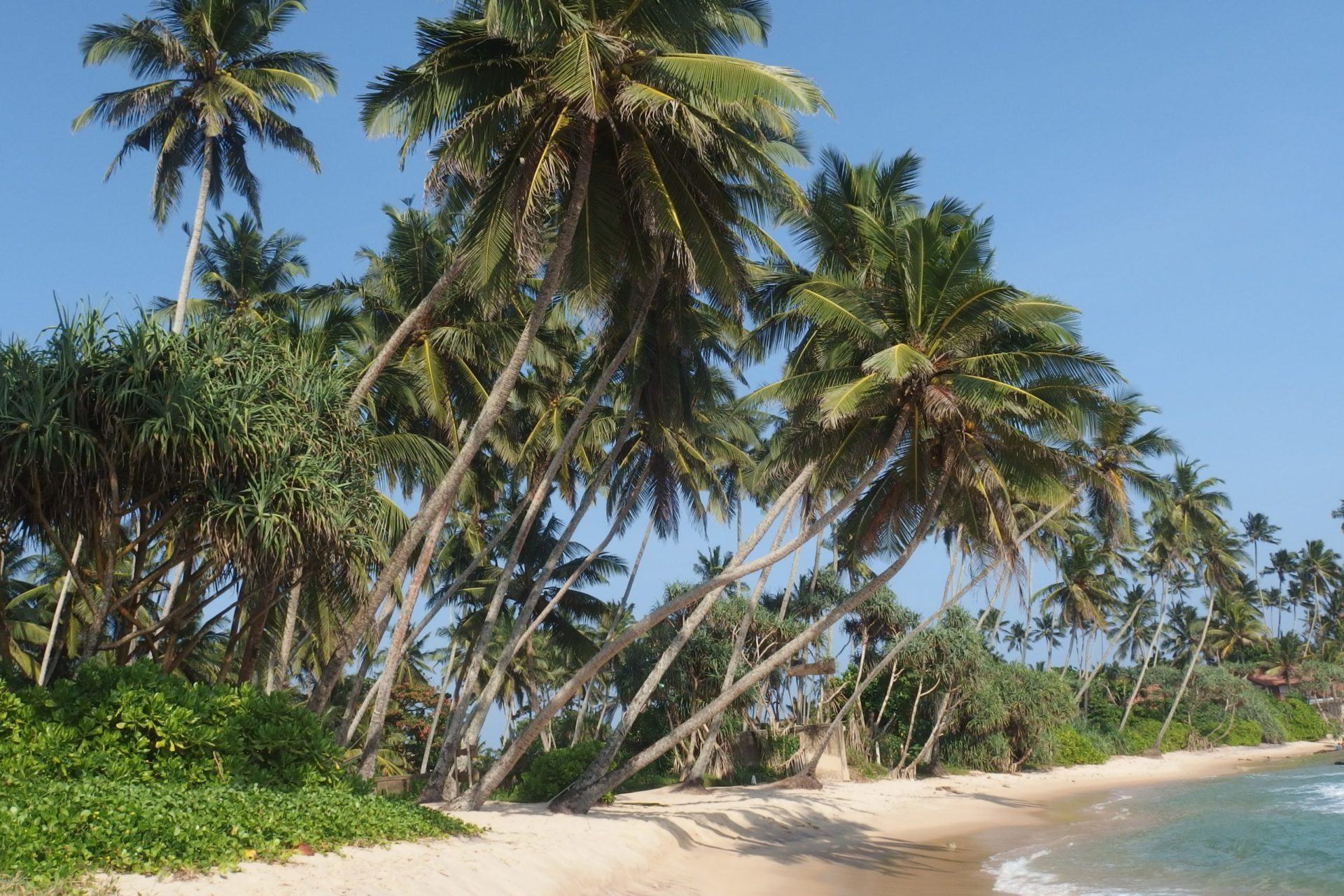 Wassertemperatur Sri Lanka
