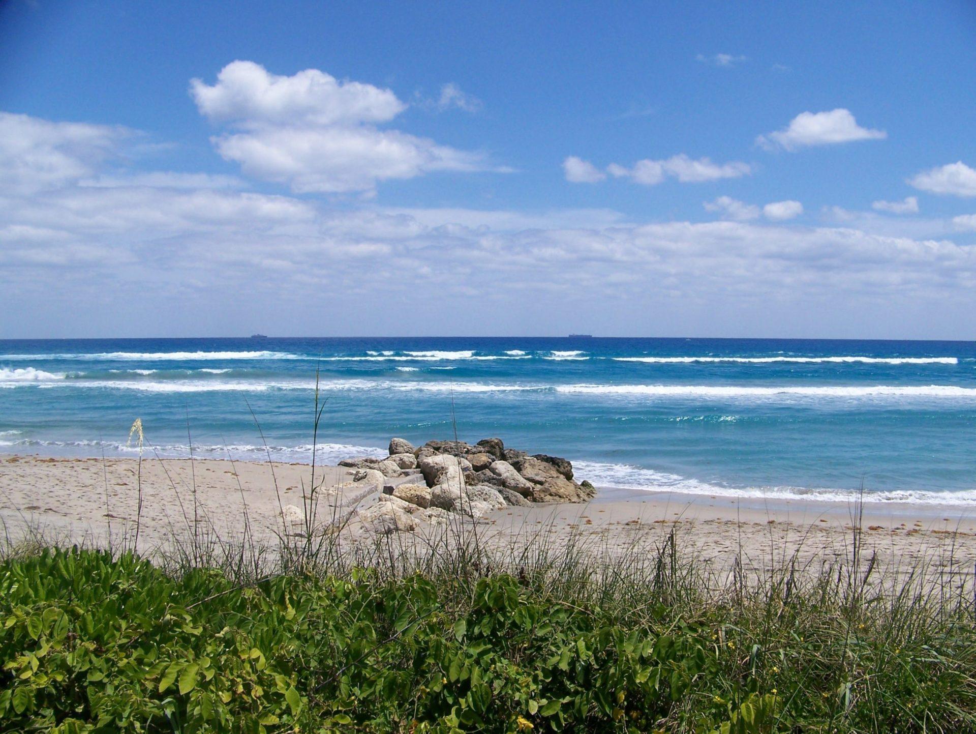 Wassertemperatur Palm Beach