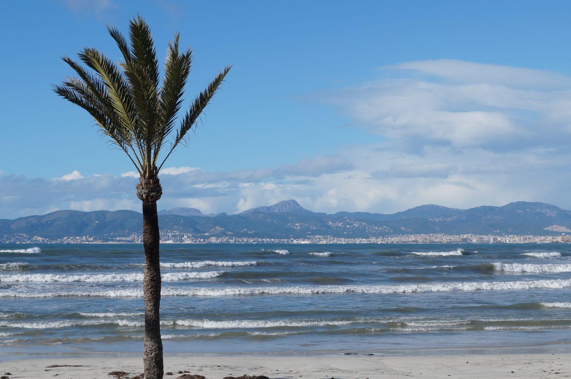 Wassertemperatur Playa de Palma